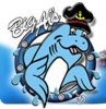 Big Al's Aquarium Services  logo