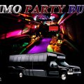 AB LIMO SERVICE - Image #7