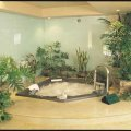 Skyview Spas & Solariums - Image #5