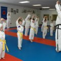 http://lustaekwondo.com | Lu\'s Taekwondo | 2288 St Joseph Blvd, Ottawa, ON K1C 7C5 | 613-837-7656 | Martial Arts Classes Ottawa Ontario