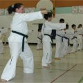 http://lustaekwondo.com | Lu\'s Taekwondo | 2288 St Joseph Blvd, Ottawa, ON K1C 7C5 | 613-837-7656 | Taekwondo and Self-Defense Classes Ottawa Ontario