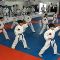 http://lustaekwondo.com | Lu\'s Taekwondo | 2288 St Joseph Blvd, Ottawa, ON K1C 7C5 | 613-837-7656 | Cardio Kickboxing Ottawa Ontario