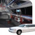 A Unique Limousine - Image #3