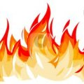 Halal tandoori flames - Image #1
