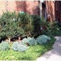 Rosedale Landscaping Ltd - Image #15
