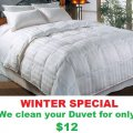 PROFESSIONAL WASH & FOLD TORONTO - Free Pick up & Delivery - 15% Off Winter Special - Clean Your Duvets / Comforters For Only $12 - Image #1