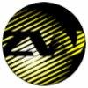 ZW Group logo