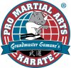 Pro Martial Arts - Burlington logo