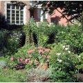 Rosedale Landscaping Ltd - Image #2