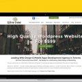 Website -Design and development