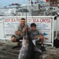 Miami Beach Swordfishing
